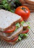 Panino con il pomodoro e le verdure Immagini Stock