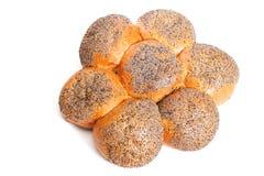 Panino con il seme di papavero Immagine Stock