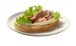 Panino con la salsiccia Fotografia Stock