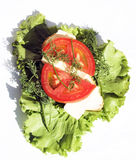 Panino con la salsiccia ed i pomodori sui fogli dell'insalata immagini stock
