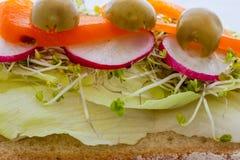 Panino con le verdure Fotografia Stock Libera da Diritti
