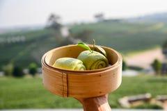 Panino cotto a vapore t? verde sul canestro di legno nella piantagione di t? immagini stock libere da diritti