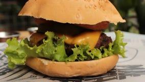 Panino del cheeseburger sul panino video d archivio