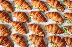 Panino del croissant dell'insalata di pollo immagine stock