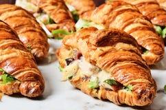 Panino del croissant dell'insalata di pollo immagine stock libera da diritti