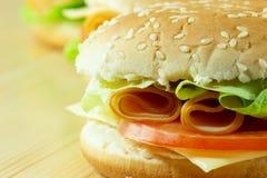 Panino del formaggio e del pomodoro Immagini Stock Libere da Diritti