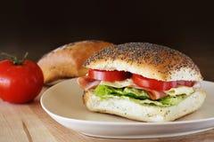 Panino del formaggio e del prosciutto Immagine Stock Libera da Diritti
