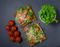 Panino del pane tostato dell'avocado con pane nero Panino sano Alimento sano Panino sano del vegano del pane tostato panino con l Fotografie Stock Libere da Diritti