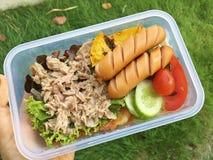 Panino del tonno con le salsiccie e la verdura fotografie stock libere da diritti