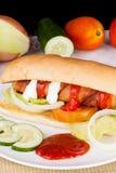 Panino delizioso casalingo dell'hot dog Fotografia Stock Libera da Diritti