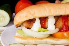 Panino delizioso casalingo dell'hot dog Fotografie Stock Libere da Diritti