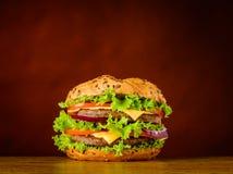 Panino dell'hamburger con carne e le verdure Fotografia Stock