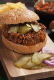 Panino dell'hamburger della carne tritata Immagini Stock Libere da Diritti