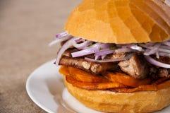 Panino della carne di maiale Immagini Stock Libere da Diritti