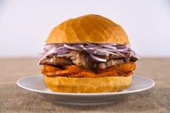 Panino della carne di maiale Immagine Stock
