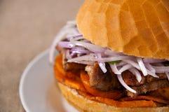 Panino della carne di maiale Immagine Stock Libera da Diritti