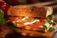 Panino della mozzarella e del pomodoro Fotografie Stock Libere da Diritti