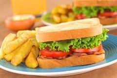 Panino di BLT con le patate fritte Fotografia Stock Libera da Diritti