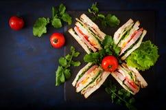 Panino di club con il prosciutto, il bacon, il pomodoro, il cetriolo, il formaggio, le uova e le erbe fotografia stock