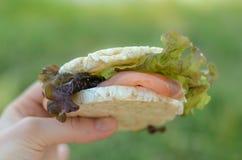 Panino di color salmone nella mano su un fondo di erba Immagine Stock