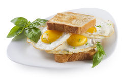 Panino di Fried Eggs Fotografia Stock