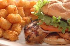 Panino di pollo cotto Fotografia Stock