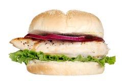 Panino di pollo cotto isolato Fotografie Stock