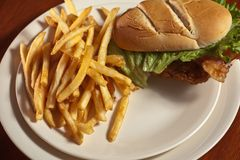 Panino di pollo croccante Fotografia Stock