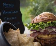 Panino di pollo hawaiano libero del glutine Immagini Stock Libere da Diritti
