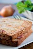 Panino francese cotto con insalata Fotografie Stock