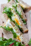 Panino fresco dell'insalata e dell'uovo Immagine Stock Libera da Diritti