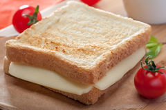 Panino tostato del formaggio immagine stock libera da diritti