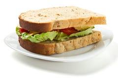 Panino vegetariano immagini stock libere da diritti