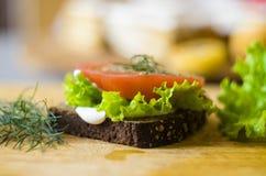 Panino vegetariano Immagini Stock