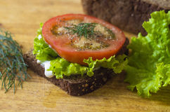 Panino vegetariano Immagine Stock