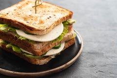 Panino vegetariano casalingo sano della verdura con lattuga cetriolo, avocado, formaggio Copi lo spazio immagini stock