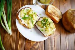 Panino vegetariano con formaggio, i sottaceti e le erbe immagine stock libera da diritti