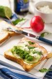 Panino vegetariano con il cetriolo, il ravanello e la ricotta immagini stock libere da diritti