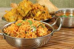 Panir biryani Royalty Free Stock Photos