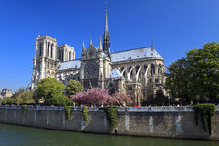 paniusi de France notre Paris obraz stock