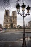 paniusi De Notre Paris czas zima Fotografia Royalty Free