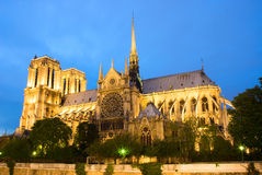 paniusi De Wieczór notre Paris widok Fotografia Royalty Free