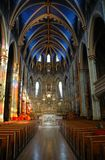 paniusi katedralny notre Ottawa Obrazy Royalty Free