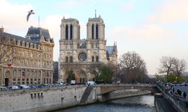 paniusi katedralny notre Paris Obraz Royalty Free