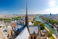 paniusi notre Paris Obrazy Royalty Free