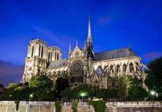 paniusia De Notre Paris Fotografia Royalty Free