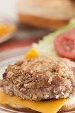 Panko Crusted Turkey Burger, Closeup Stock Images