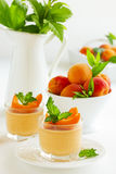 Panna cotta with apricots Royalty Free Stock Photo