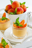 Panna cotta with apricots Stock Image