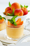 Panna cotta with apricots Stock Images